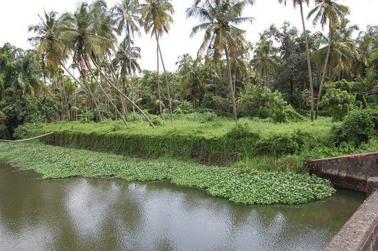 15.25 cents scenic property in Chettupuzha, Trichur corp limits