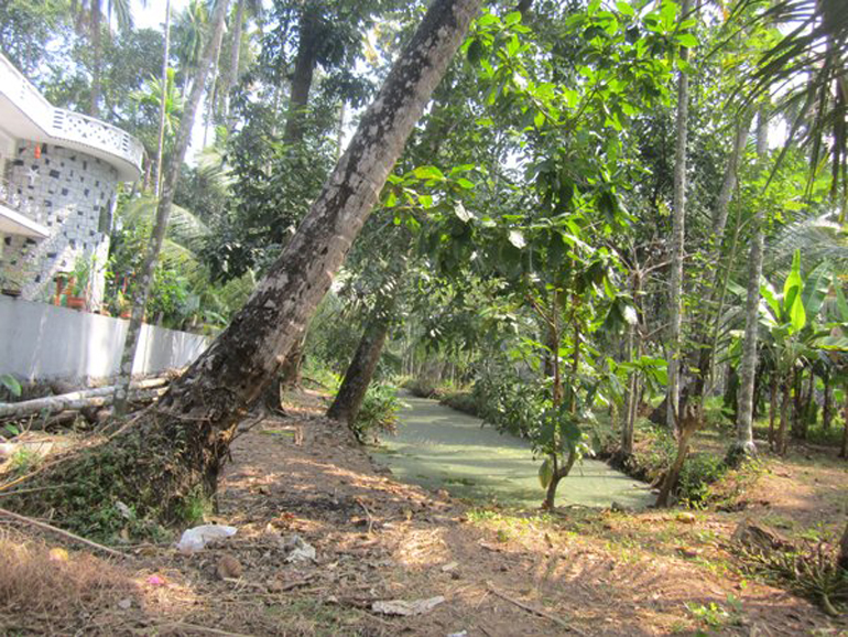 Land for sale at Kodungallur town