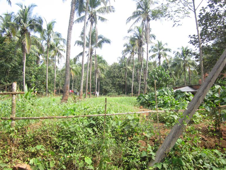 Residential Land for sale at Malappuram Dist.