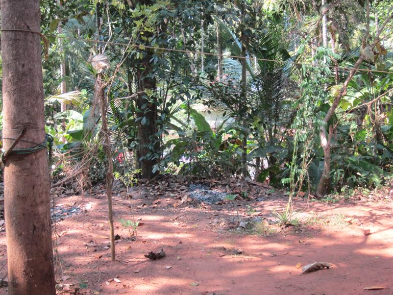 LAND FOR SALE AT IDUKKI