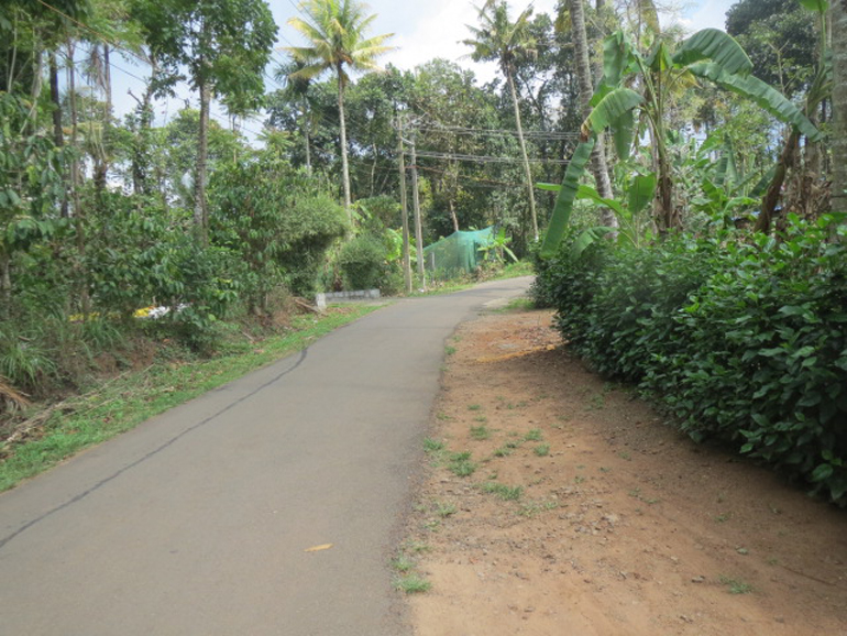 Land and house for sale at Idukki Dist