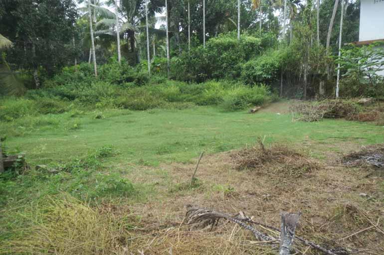 LAND FOR SALE AT KODUNGALLUR