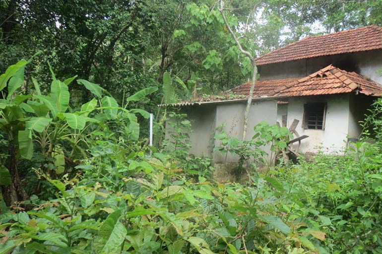 Land for Sale in Malappuram Dist., Kalady village