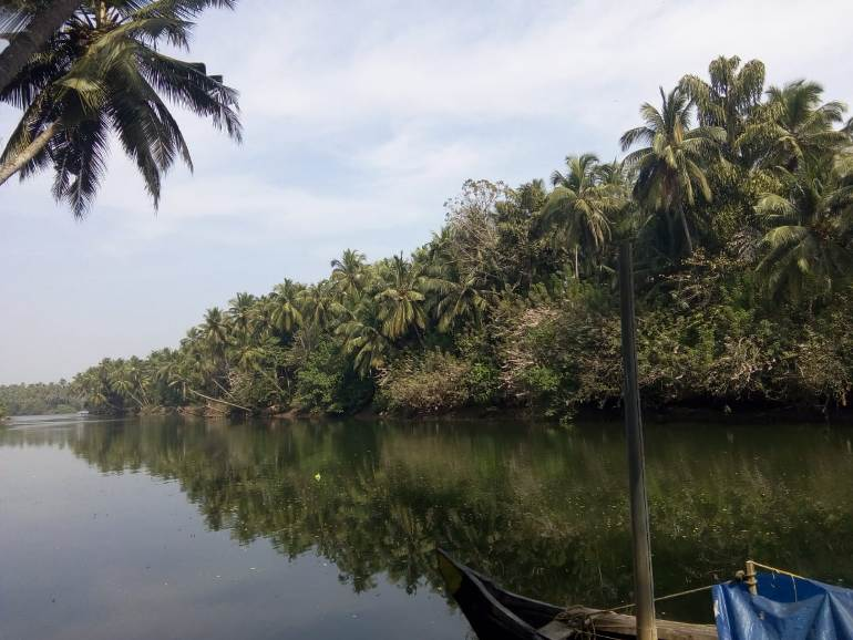 Island area land for sale at Kozhikode