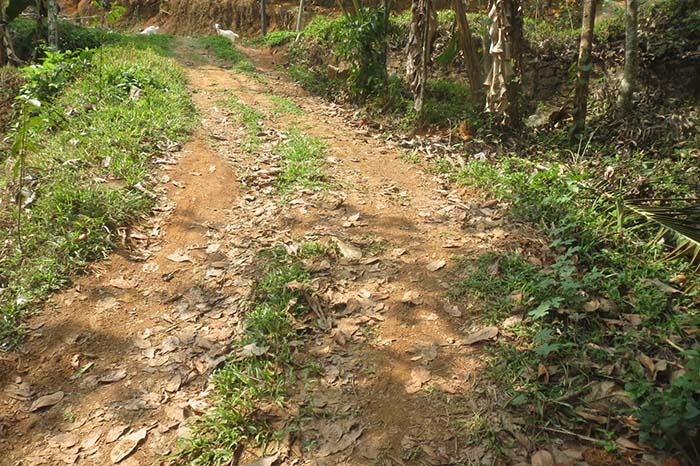 LAND AND HOUSE FOR SALE AT ERNAMKULAM DIST