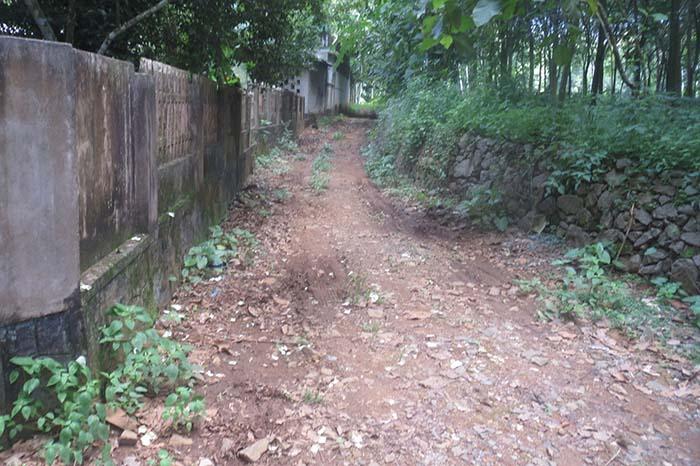 Residential plot for sale at Ernamkulam Dist.